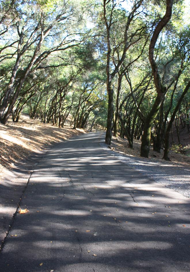 prescott_driveway