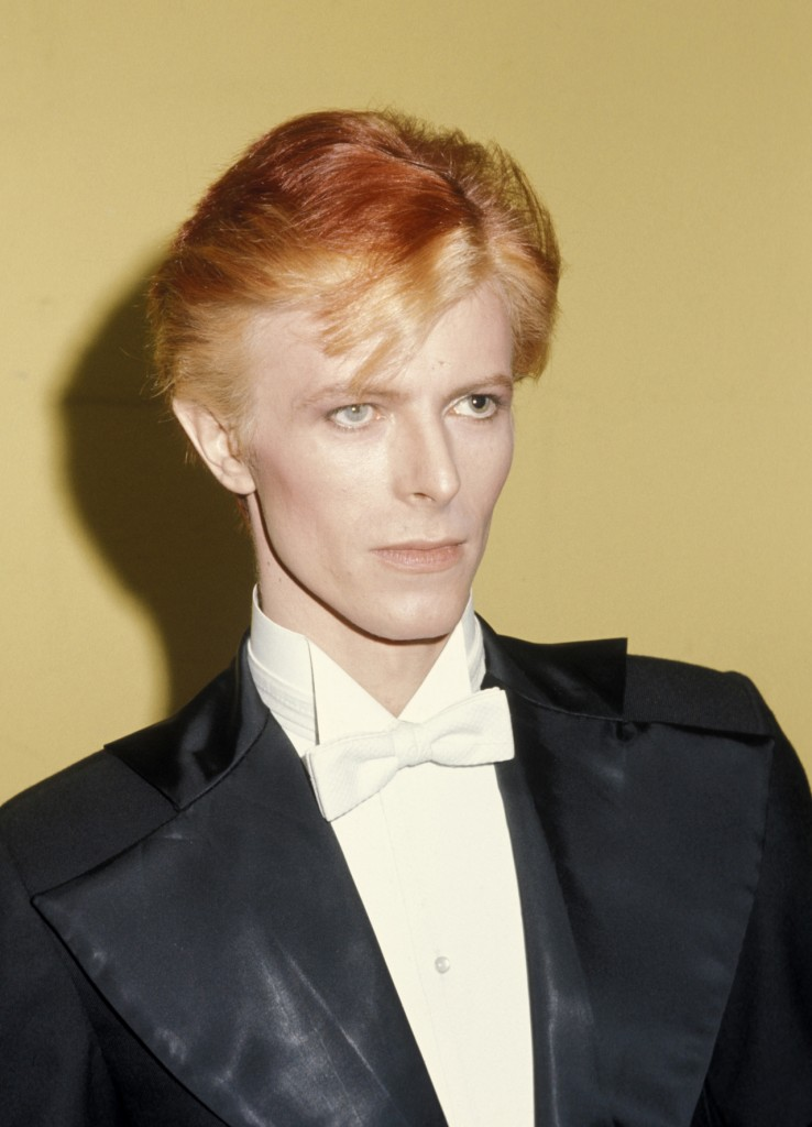 David Bowie (Photo by Ron Galella/WireImage)